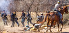 New Mexico - Battle of Valverde reenactment in 2012 - 2-26-12-C1-0160 - 72 ppi-2