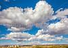 New Mexico - Fort Craig Nat'l Historic Site, south of Socorro - D6-C3-0234 - 72 ppi
