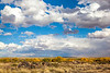 New Mexico - Fort Craig Nat'l Historic Site, south of Socorro - D6-C3-0270 - 72 ppi