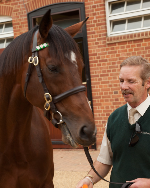 Rotary trip to newmarket