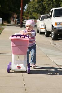 10/10/2008-shopping cart