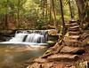 Tolliver Falls Trail