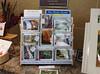 Eco-Card Boxed Sets<br /> Patuxent National Wildlife Refuge Holiday Bazaar, November 2014