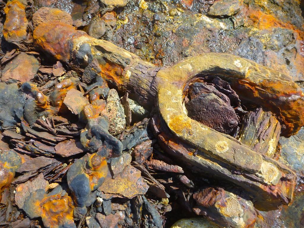 Rust Becomes Art