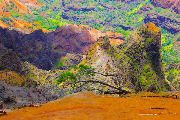 Waimea Canyon - Kauai