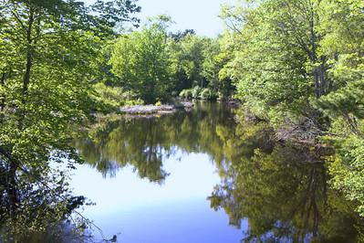 Reflection Landscape