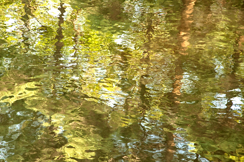 Abstract Tree Reflections