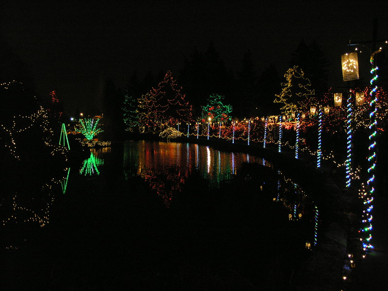 8080 Olympus 8 MP:<br /> Dancing light & boardwalk reflections in the pond.