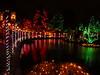 NV10 MP Samsung:<br /> Dancing light & boardwalk reflections in the pond.