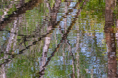Reflections in the Canal at the Fairy Bridge, Rockingham, Co. Roscommon