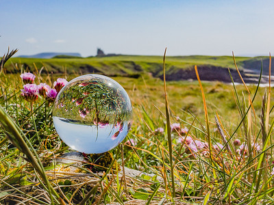 Classiebawn and Pink Thrift In Crystal Ball , Mullaghmore, Co. Sligo