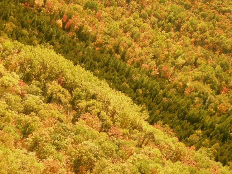 Brockway Mountain Lookout