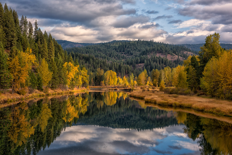 Fall Foliage along the Coeur d'Alene River