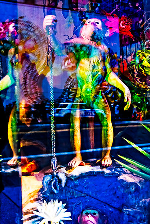 Two Monkeys, 57th Street, Reflections
