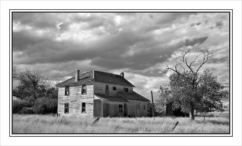 Abandoned In Southern Alberta