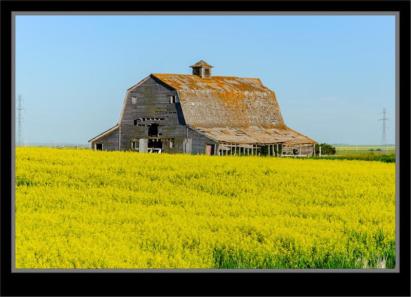 Alberta On Township Road 222 Near Dalemead