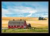 Alberta Foothills Barn Golden Fall