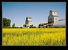 Barnsley Manitoba