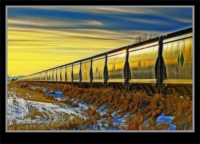 Endless Line Of Rail Cars In Storage  - Rail Line Near Herronton, Alberta