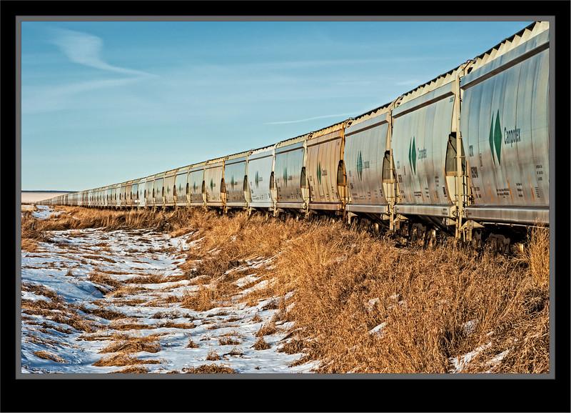 Endless Line Of Rail Cars In Storage Looking East - Rail Line Near Herronton, Alberta