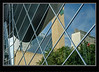 Window Reflection - Edmonton Ab