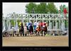 Millarville Race Day