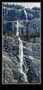 Weeping Wall - Banff National Park