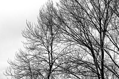 _VV_1866-©Ch-Mouton