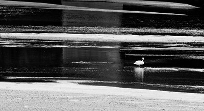 _VV_7471-©Ch-Mouton