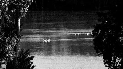 _VV_7506-©Ch-Mouton