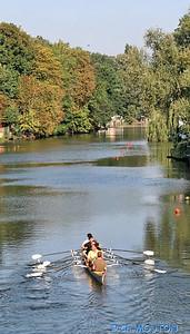 Aviron sur le Loiret 4 C-Mouton