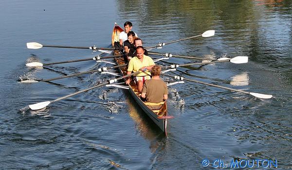 Aviron sur le Loiret 2 C-Mouton