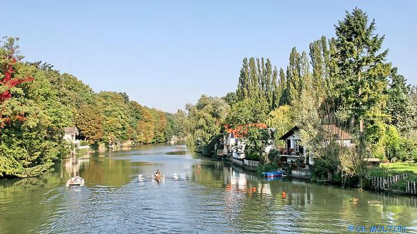 Aviron sur le Loiret 5 C-Mouton
