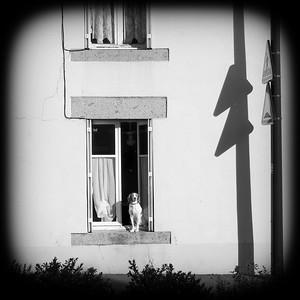 DSCF9055-a-©Ch-Mouton