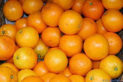 Oranges C-Mouton