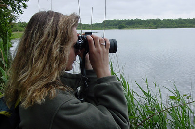 Nature Observation 0 C-Mouton