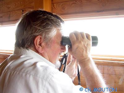 Brenne Bird Watching 07 C-Mouton