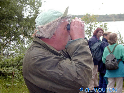 Observateur  C-Mouton