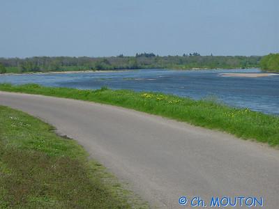 Route 9 C-Mouton