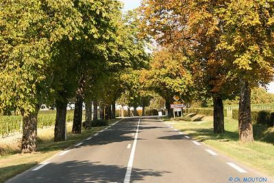Route Sancerre C-Mouton