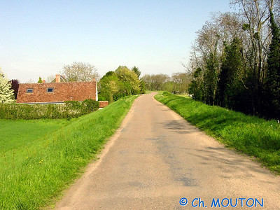 Route 8 C-Mouton