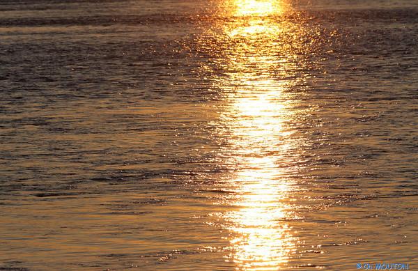 Coucher de soleil Fourneaux 48 C-Mouton