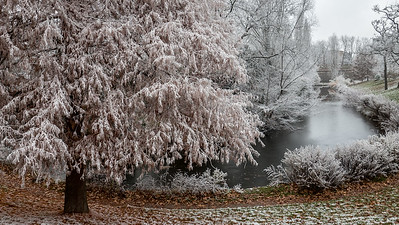 Neige de fin d'automne