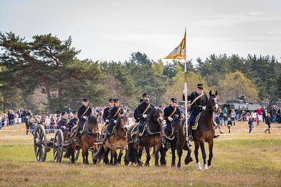 Regementets dag P7 Revingehed 2017