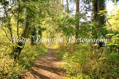 Lampson Ireland-3