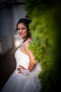 Raginold & Sweta Wedding 0033