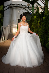 Raginold & Sweta Wedding 0039