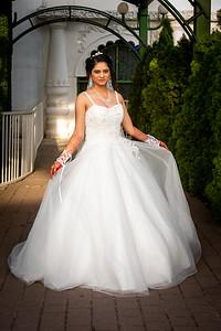 Raginold & Sweta Wedding 0037