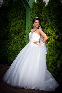 Raginold & Sweta Wedding 0030