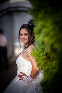 Raginold & Sweta Wedding 0032